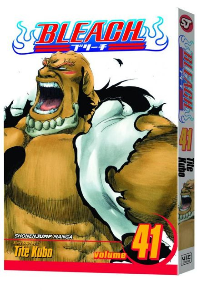 Bleach Vol. 41