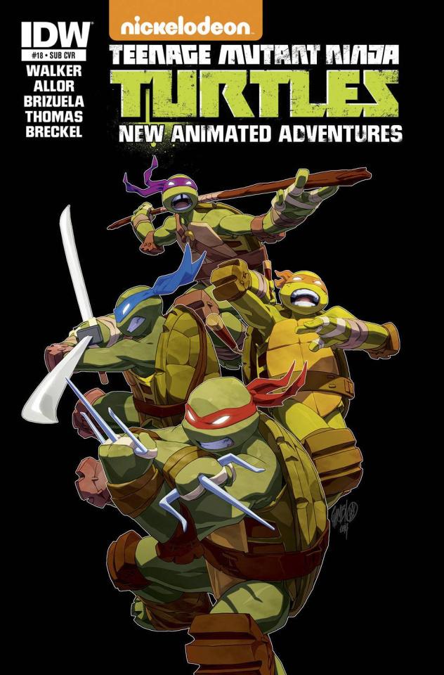Teenage Mutant Ninja Turtles: New Animated Adventures #18 (Subscription Cover)
