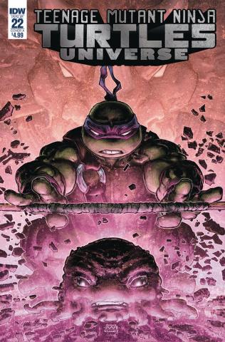 Teenage Mutant Ninja Turtles Universe #22 (Williams II Cover)