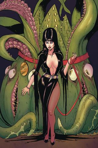 Elvira: Mistress of the Dark #11 (25 Copy Seeley Virgin Cover)