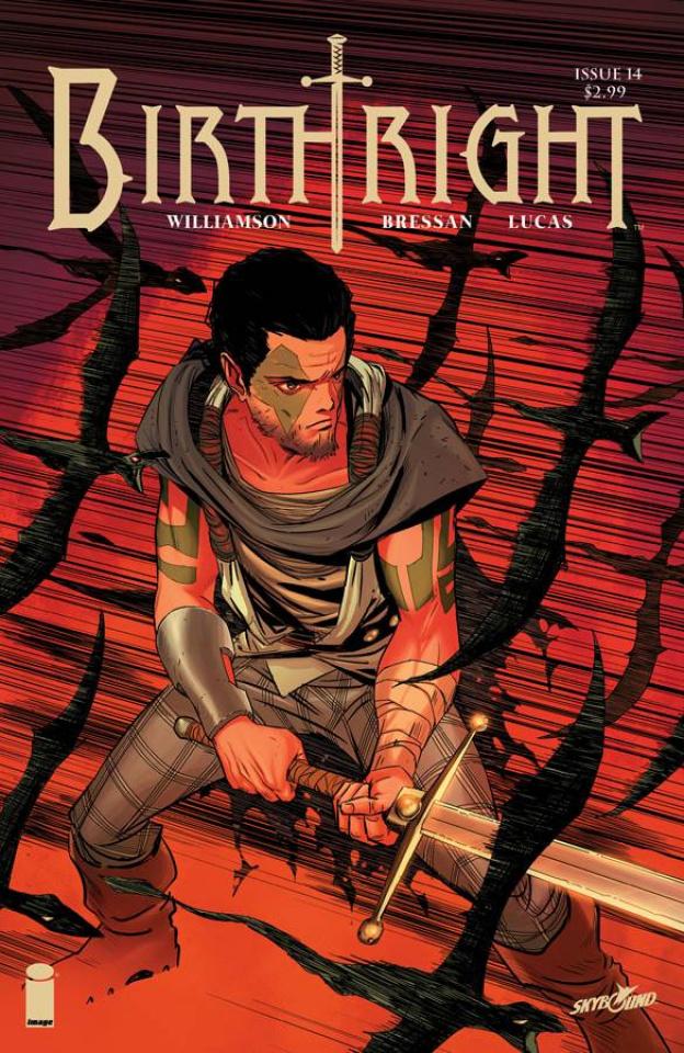 Birthright #14 (Dragotta Cover)