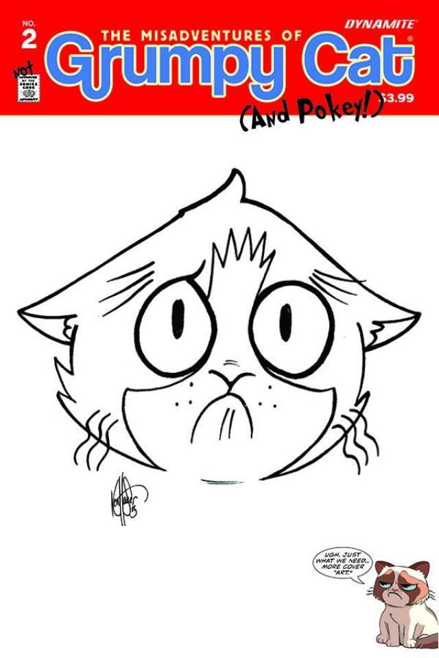 Grumpy Cat (and Pokey!) #2 (Haeser Hand Drawn Sketch Cover)