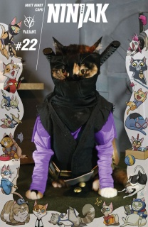 Ninjak #22 (Cat Cosplay Cover)
