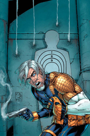 Deathstroke #14 (Variant Cover)