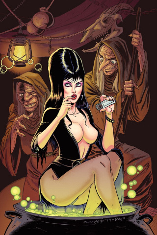 Elvira: Mistress of the Dark #10 (25 Copy Seeley Virgin Cover)