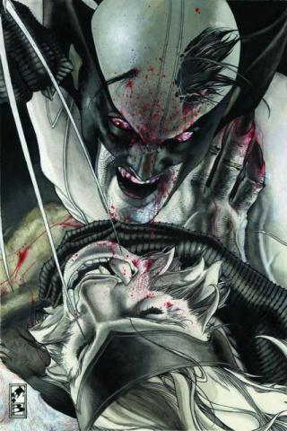 Wolverine #313