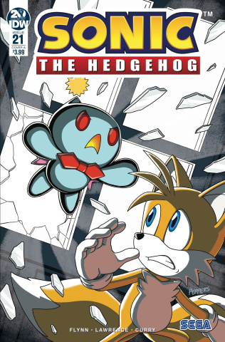 Sonic the Hedgehog #21 (Hammerstrom Cover)