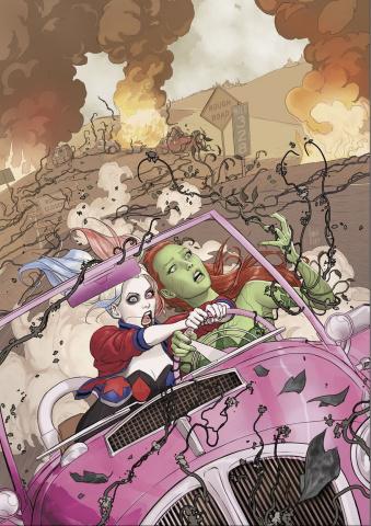 Harley Quinn & Poison Ivy #1