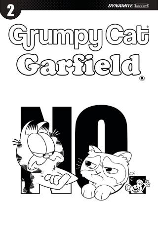 Grumpy Cat / Garfield #2 (10 Copy Hirsch Cover)