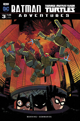 Batman / Teenage Mutant Ninja Turtles Adventures #3 (Subscription Cover)