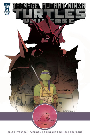 Teenage Mutant Ninja Turtles Universe #21 (Torres Cover)