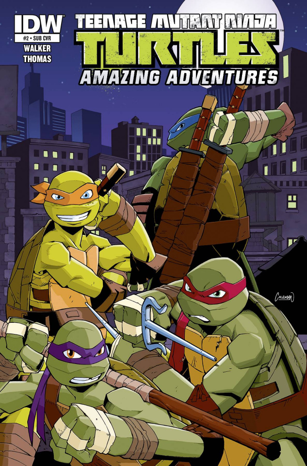 Teenage Mutant Ninja Turtles: Amazing Adventures #2 (Subscription Cover)
