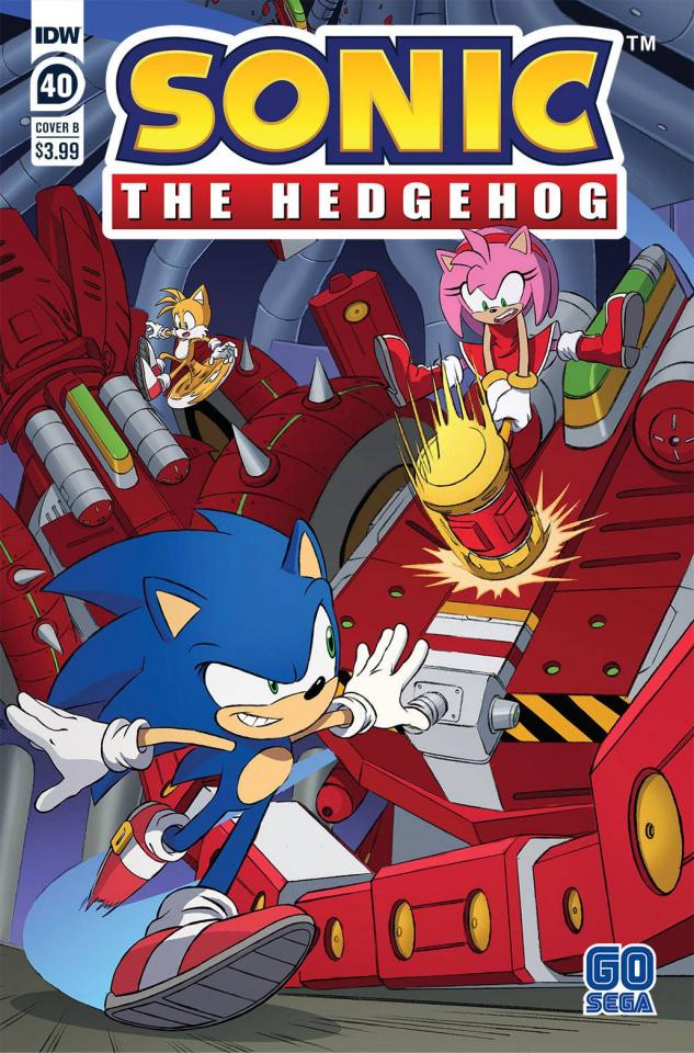 Sonic the Hedgehog #40 (Dan Schoening Cover)