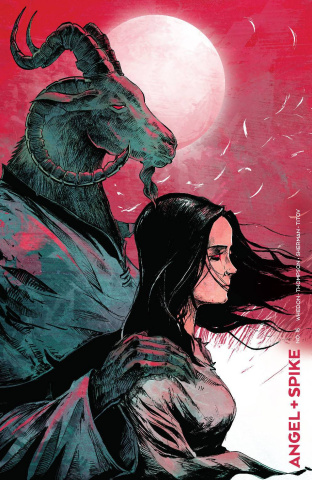 Angel & Spike #15 (Bowyer Cover)