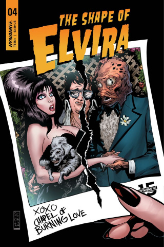 The Shape of Elvira #4 (Acosta Cover)