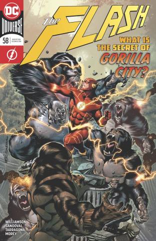The Flash #58