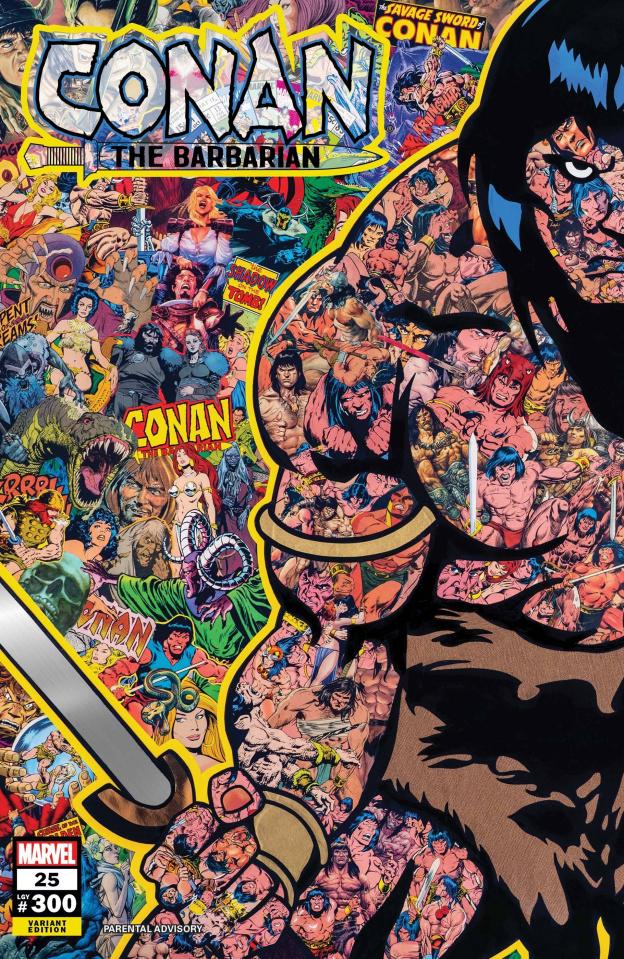 Conan the Barbarian #25 (Garcin Cover)