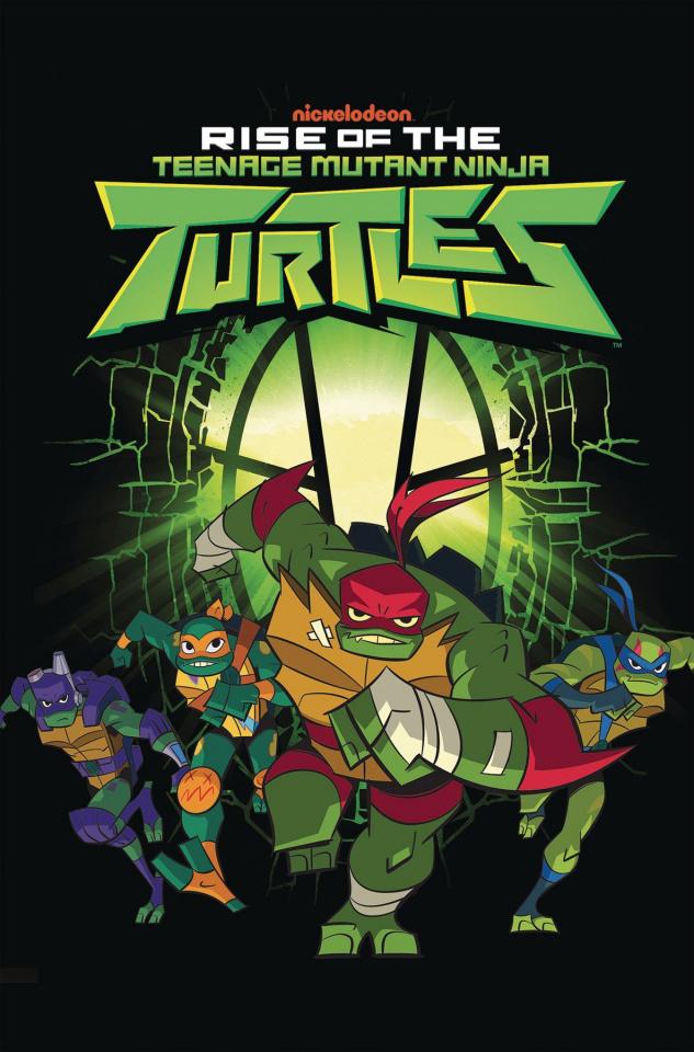 Rise of the Teenage Mutant Ninja Turtles Vol. 1