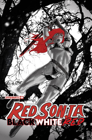 Red Sonja: Black, White, Red #4 (Staggs Cover)