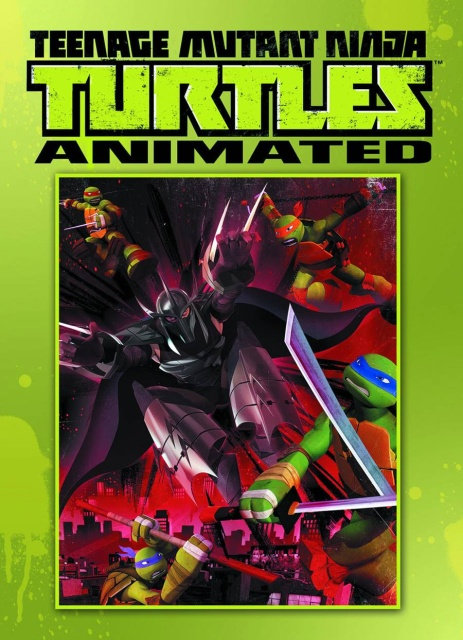 Teenage Mutant Ninja Turtles Animated Vol. 1