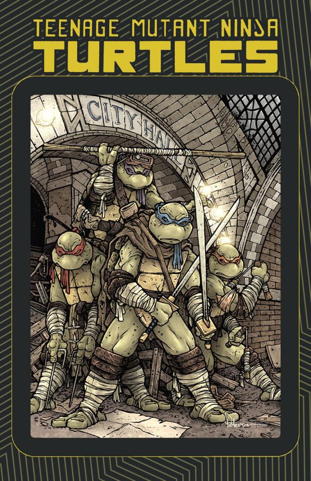 Teenage Mutant Ninja Turtles Macro-Series