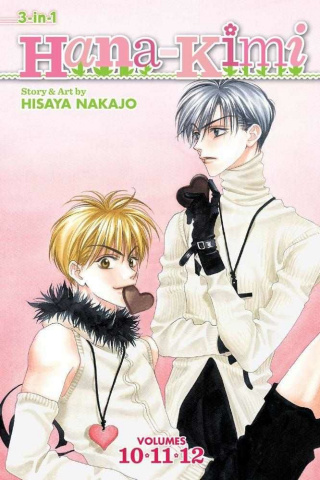 Hana Kimi Vol. 4 (3-in-1 Edition)