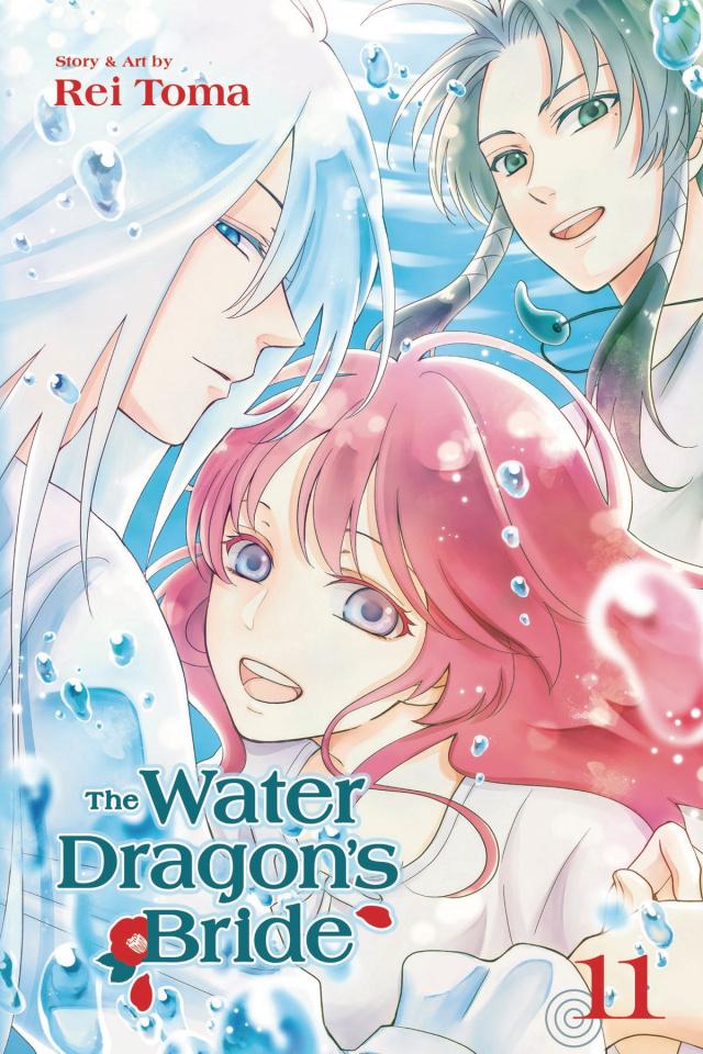 The Water Dragon's Bride Vol. 11