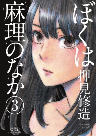 Inside Mari Vol. 3