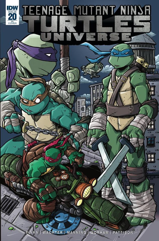Teenage Mutant Ninja Turtles Universe #20 (10 Copy Cover)