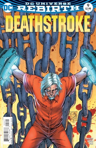 Deathstroke #9 (Variant Cover)