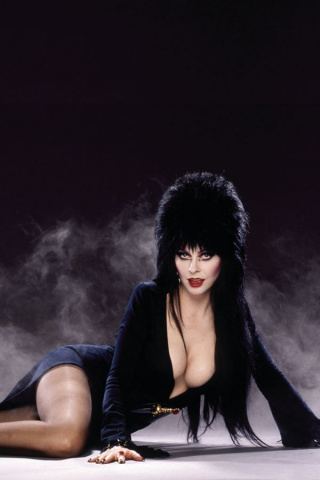 The Shape of Elvira #3 (40 Copy Photo Virgin Cover)