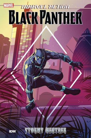 Marvel Action: Black Panther Book 1: Stormy Weather