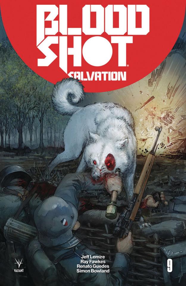Bloodshot: Salvation #9 (Rocafort Cover)