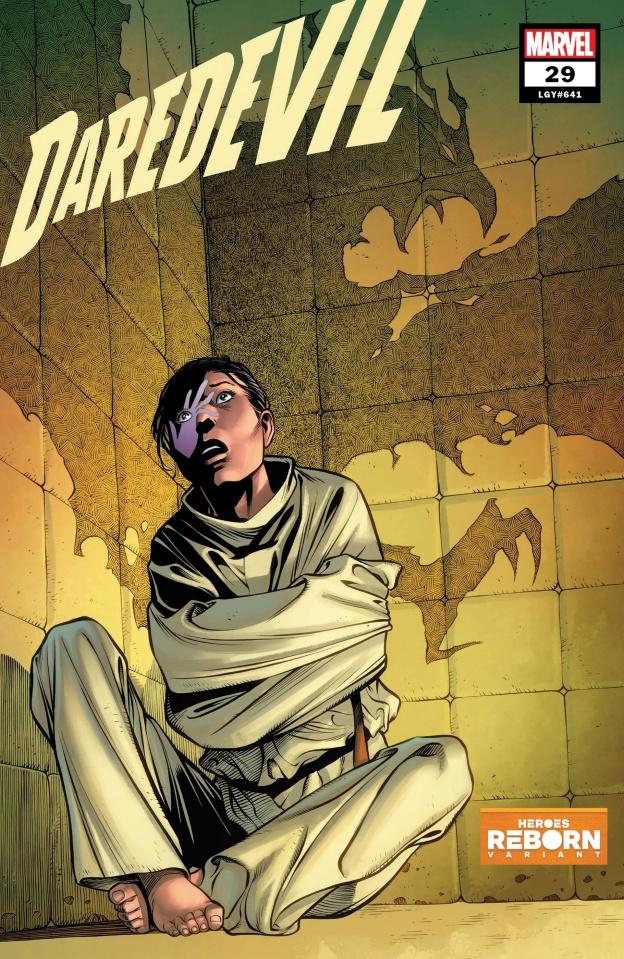 Daredevil #29 (Pacheco Reborn Cover)