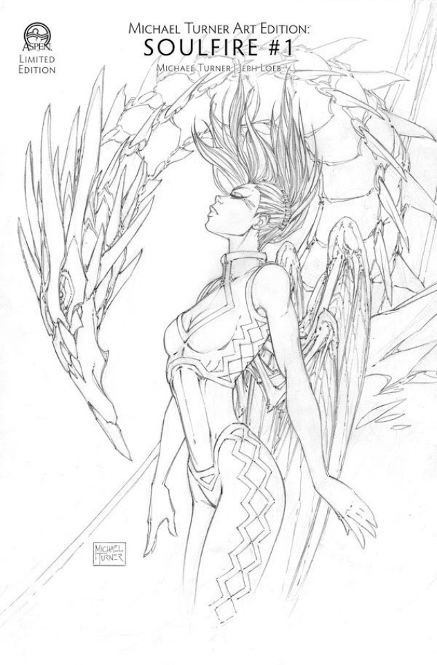 Michael Turner Art Edition: Soulfire #1 (6 Copy Cover)