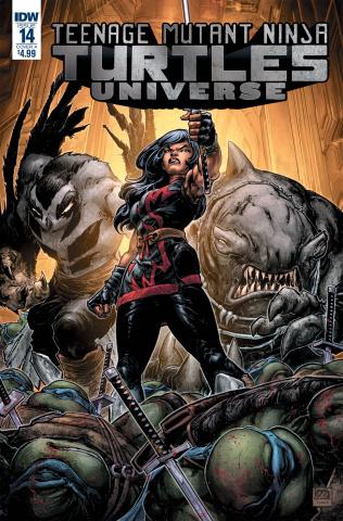 Teenage Mutant Ninja Turtles Universe #15 (Williams II Cover)