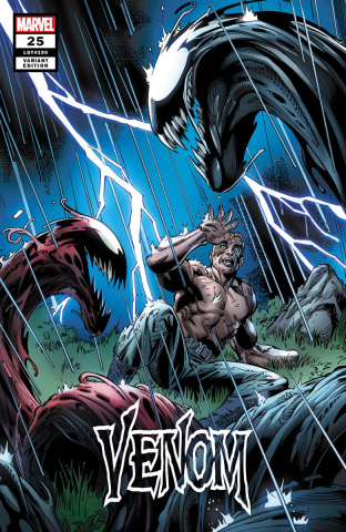 Venom #25 (Bagley Cover)