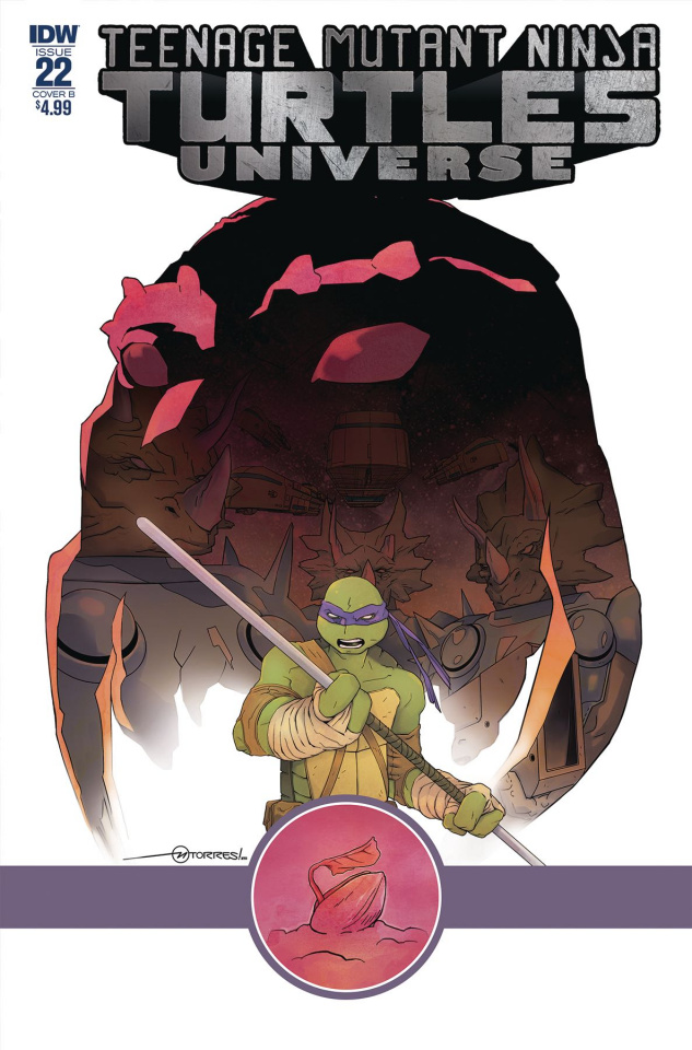 Teenage Mutant Ninja Turtles Universe #22 (Torres Cover)
