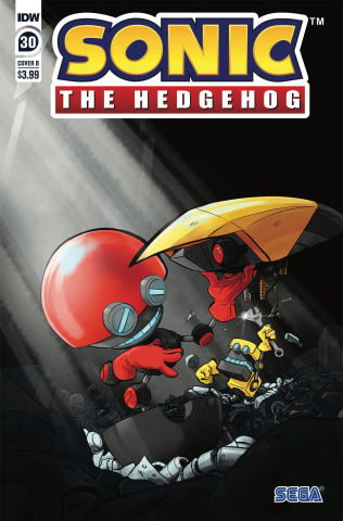 Sonic the Hedgehog #30 (Skelly Cover)