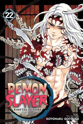 Demon Slayer: Kimetsu No Yaiba Vol. 22
