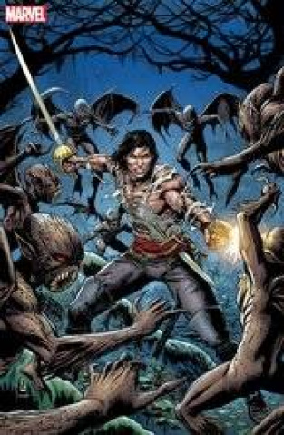 Solomon Kane: The Original Marvel Years (Omnibus)
