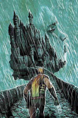 Wolverine #316