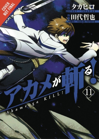 Akame Ga KILL! Vol. 11