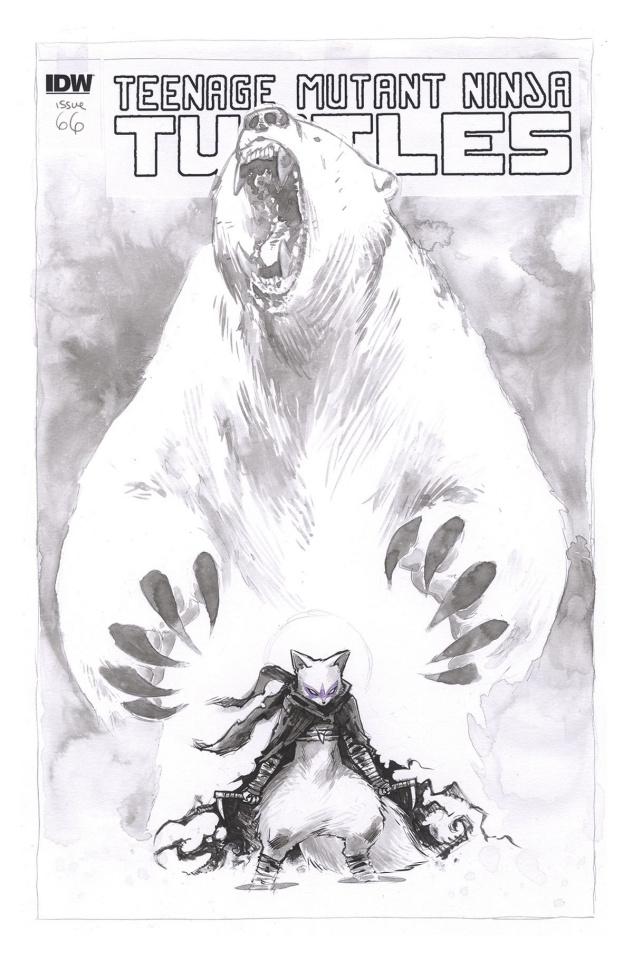 Teenage Mutant Ninja Turtles #66 (Artist's Edition)