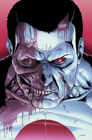 Bloodshot & H.A.R.D. Corps #23 (Perez Cover)