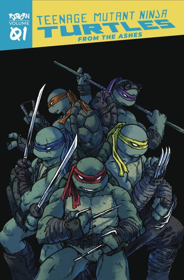 Teenage Mutant Ninja Turtles: Reborn Vol. 1: From the Ashes