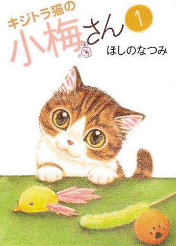 Plum Crazy! Tales of a Tiger-Striped Cat Vol. 1