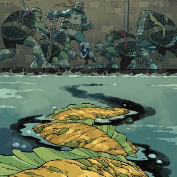 Teenage Mutant Ninja Turtles #106 (Daniel Cover)