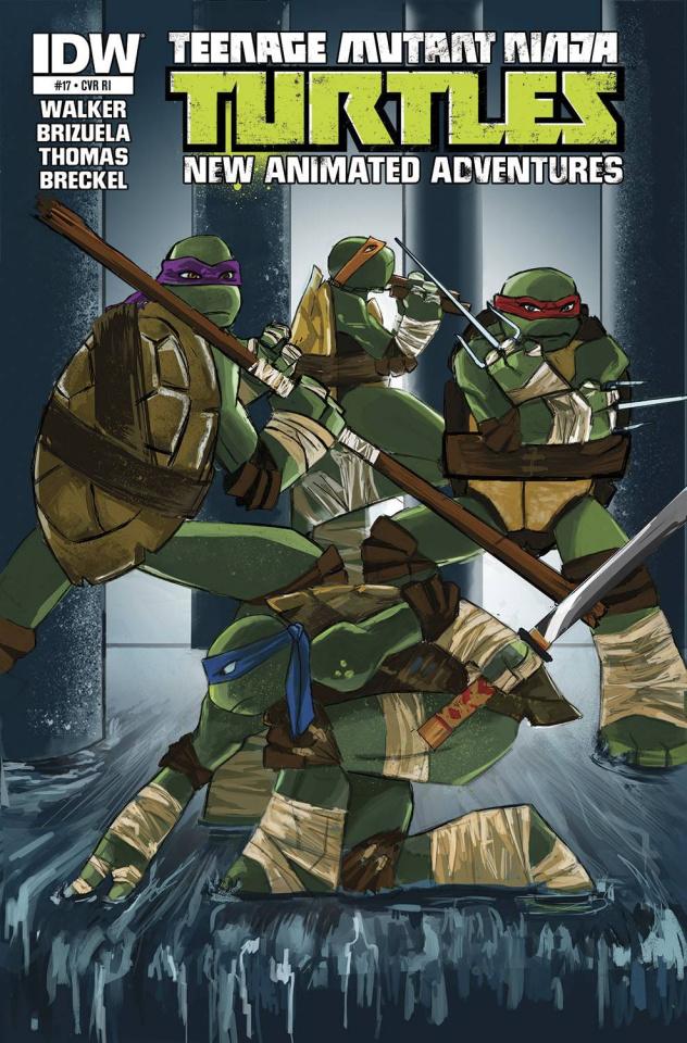 Teenage Mutant Ninja Turtles: New Animated Adventures #17