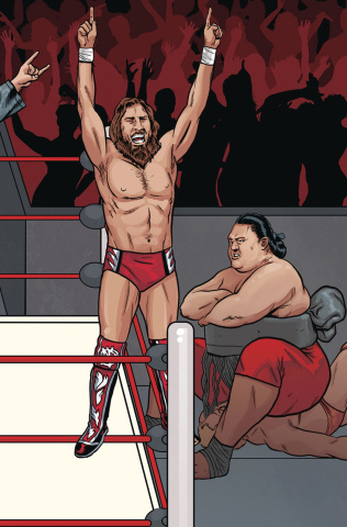 WWE #20 (Schoonover Raw Connecting Cover)